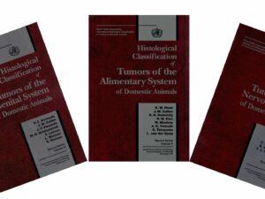 World Health Organization Tumor Fascicles